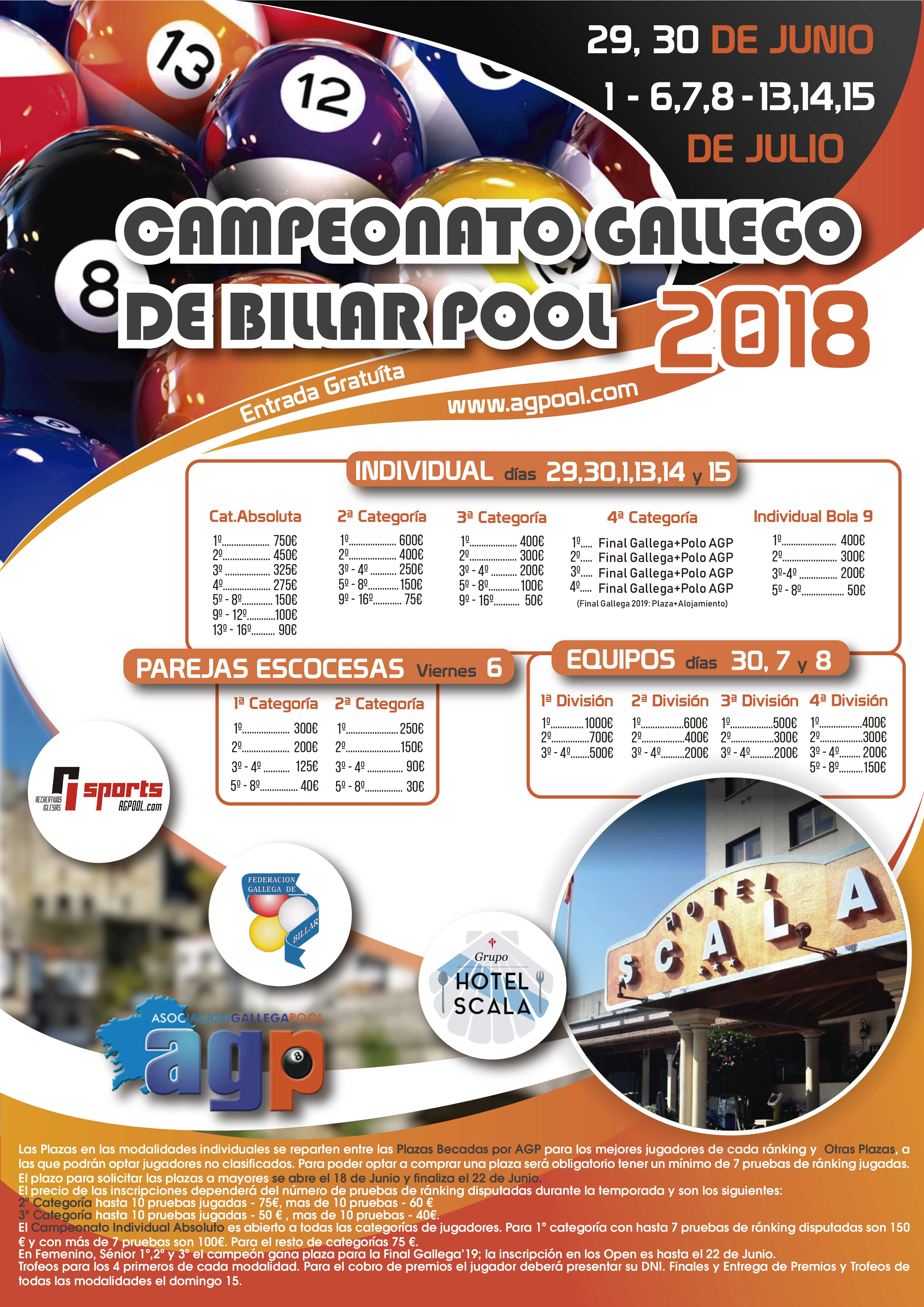 XXVI CAMPEONATO GALLEGO DE BILLAR POOL 2018